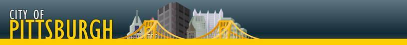 city of pittsburgh banner
