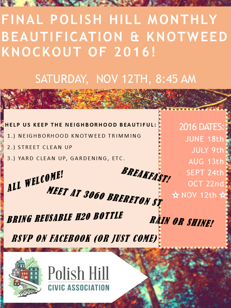 phca-final-knotweed-knockout-of-2016-flyer